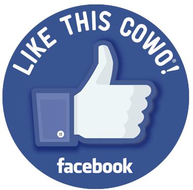Pagina Facebook Crotone